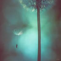 Isolement...