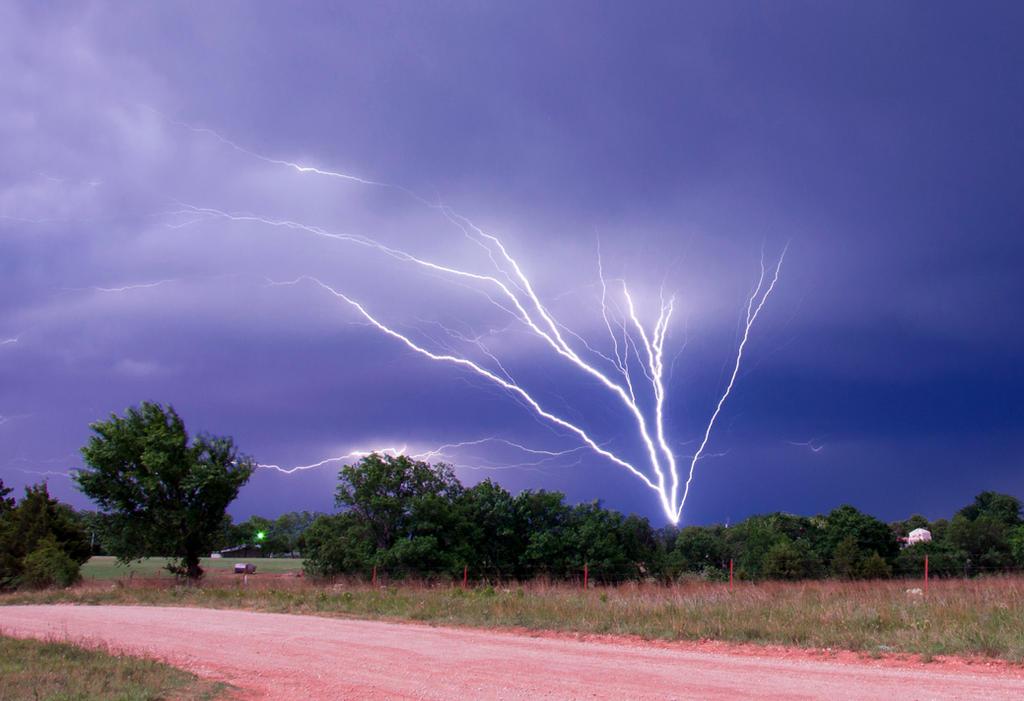 Tree Lightning by Bvilleweatherman