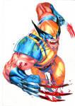 WOLVE-Wolverine