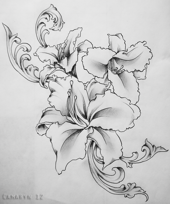 Lily Tattoo Line Drawing : Lily tattoo commission by camaryn on deviantart