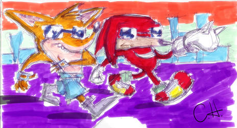 Crash Knux Cops out by mrstupes