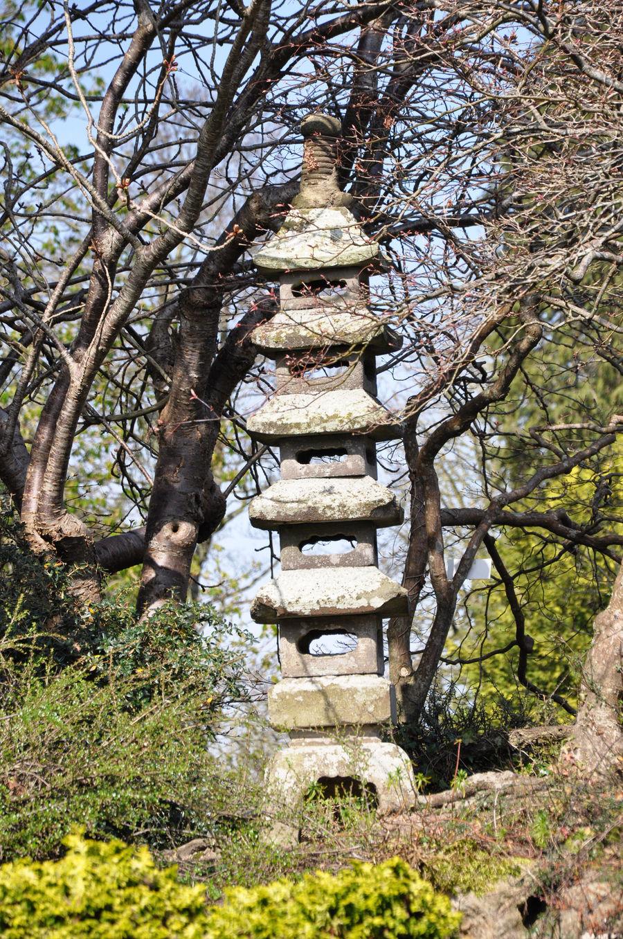 Akopito Photography - Japanese Garden 5 by Akopito