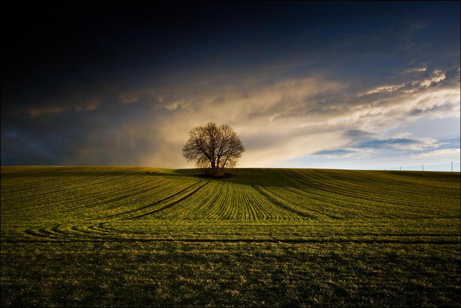 Not far from home... by ketscha
