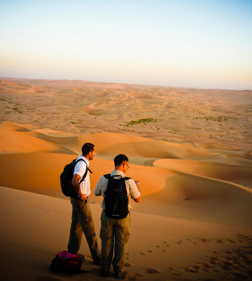 lost in the desert The much awaited follow-up narrative feature to samson & delilah lacks coherence.