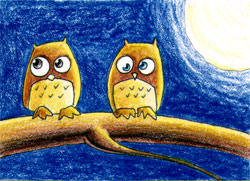 Owls by notkristina