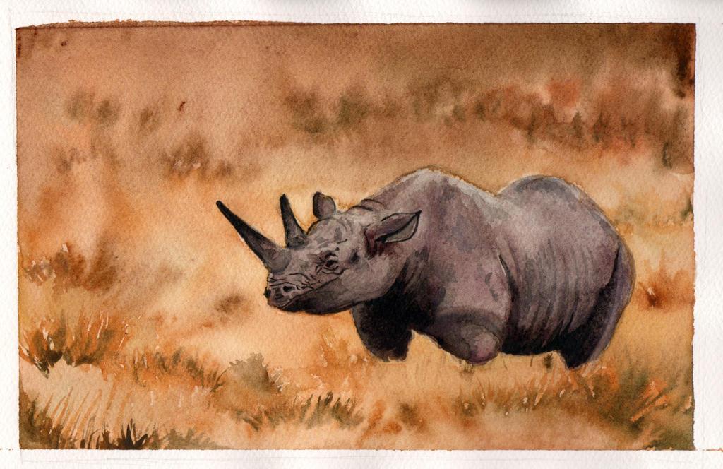 Rhino by T-koro