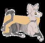 Kitty Adoptable - CLOSED