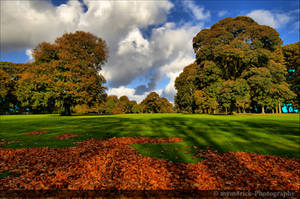 Autumn In The Park 0488o by Haywood-Photography