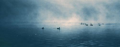 Dawn by CathleenTarawhiti