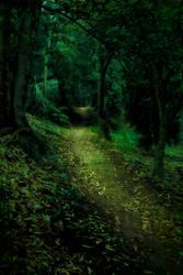 Enchanted Forest 4 by CathleenTarawhiti