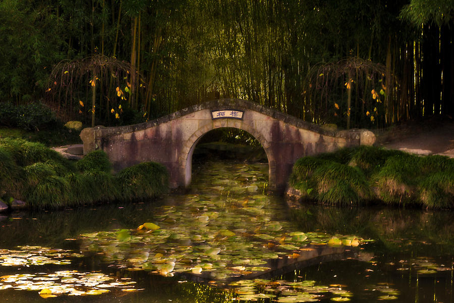 Oriental bridge on a pond by CathleenTarawhiti