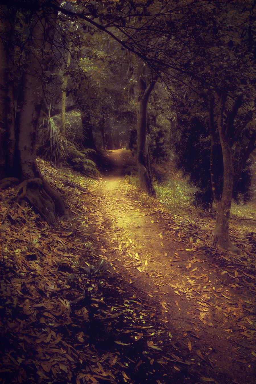 Golden walkway
