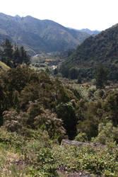 New Zealand stock 11 by CathleenTarawhiti
