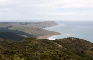 New Zealand stock 54 Mahia Peninsula by CathleenTarawhiti