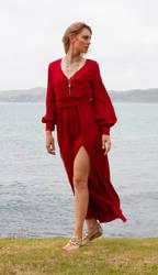 Aleida red dress 1