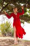 Aleida red dress 11