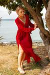 Aleida red dress 14