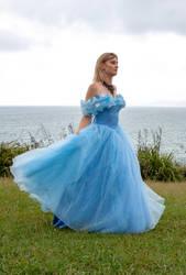 Aleida blue dress 17