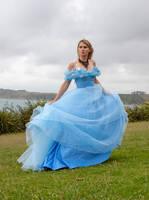 Aleida blue dress 20