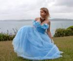 Aleida blue dress 22
