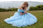 Aleida blue dress 23