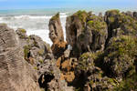 Pancake Rocks, Punakaiki, New Zealand 15