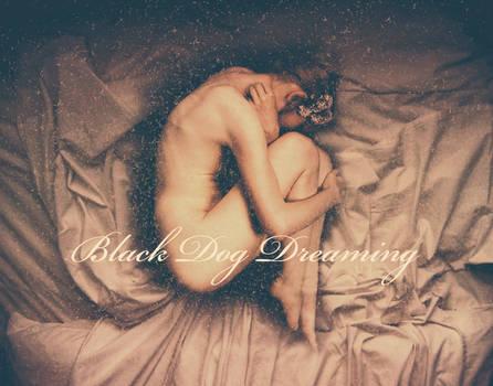 Black Dog Dreaming