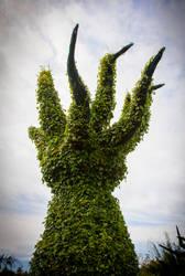 Surrealist tree stock 1