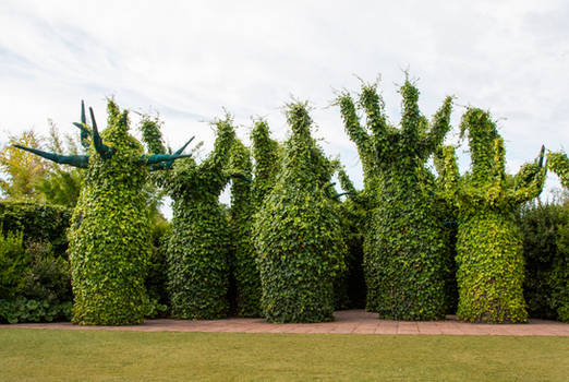 Surrealist tree stock 4