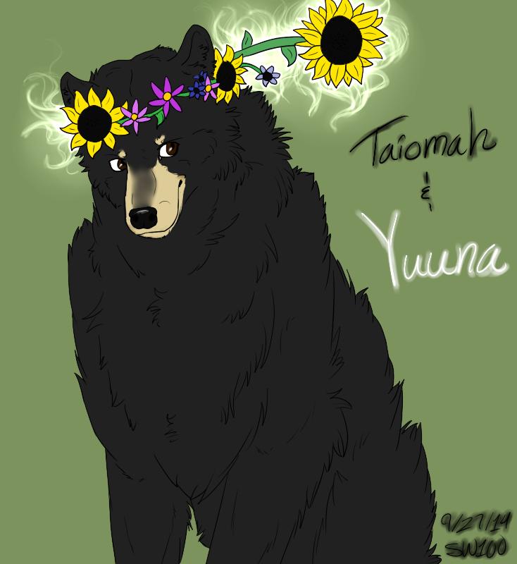 ~Sun and the Bear:. by SapphireWolf100
