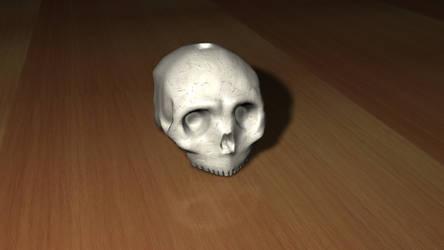 Skull 3D Model by lycanosis