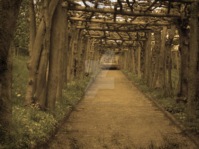 Sepia Wood Tunnel by unclefrogface