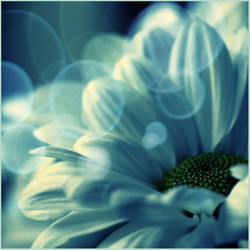 Clueless Blue by MarcheTheChaosAngel