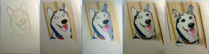 Steps painting husky with dry pastels