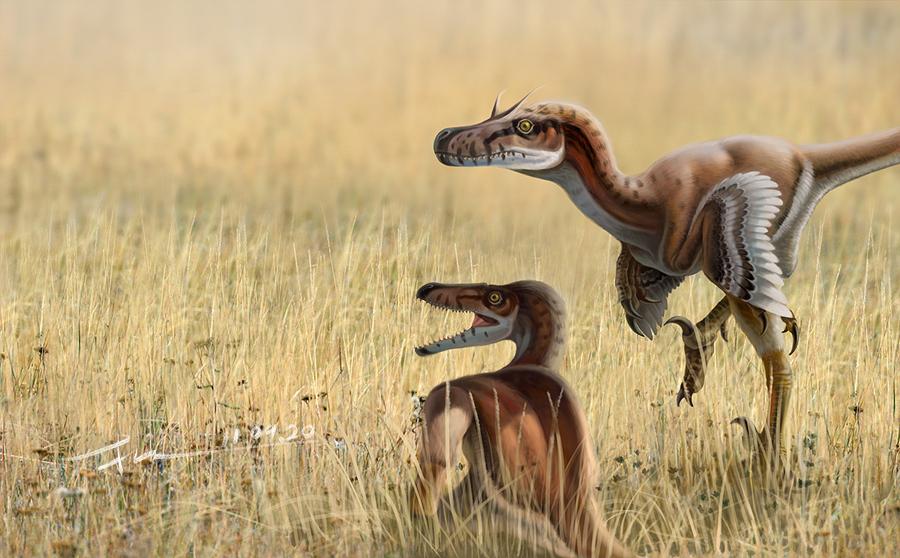 Linheraptor by kenpuren