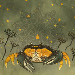 Crab Zine
