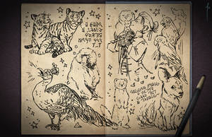 Jester's Sketchbook - spread 34 by JoannaJohnen