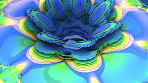 floral Torus