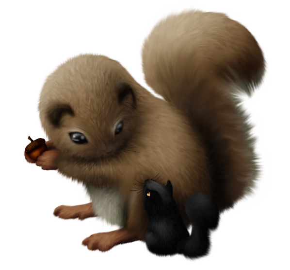 Siriu and Squirrel by A-R-T-3-M-I-S