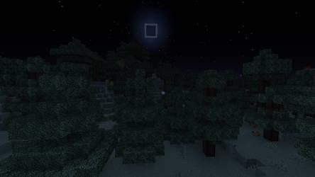 Minecraft Forest Night Calm (27/8/2019)