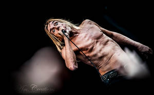 IGGY AND THE STOOGES II by AmCreationss