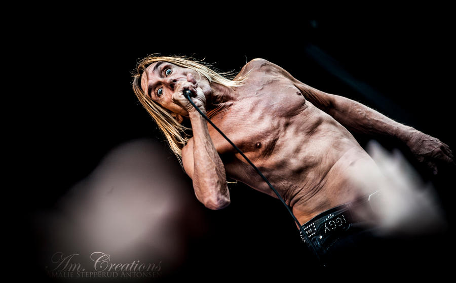 IGGY AND THE STOOGES II