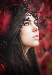My autumn dream by AmCreationss