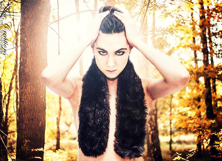 Queen of woodlands