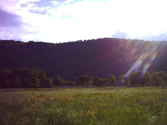 A field in Maenan Abbey by bigmomma63