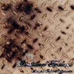 Album - Static + Rust