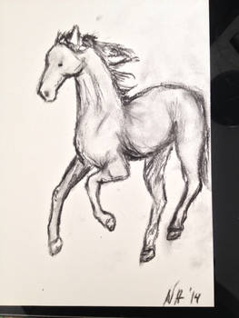 Some Sketching with Charcoal