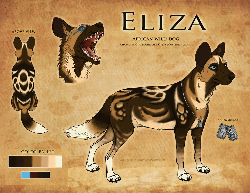 Eliza Reference Sheet [COM] by SaltedDriftwood