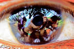 Eye Reflection by adlforlife