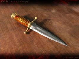 Subtle Knife by j-west